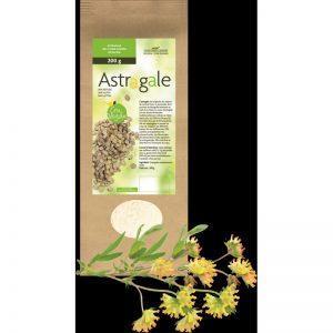 Astragale pure poudre de racine Crue et Vegan