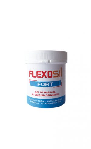 FLEXOSIL FORT GEL